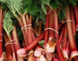 Farmer's Market Friday: Rhubarb