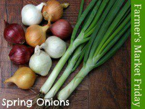 Farmer's Market Friday: Spring Onions