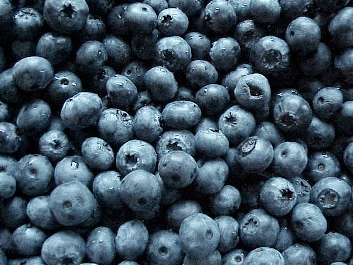Blueberries on PocketChangeGourmet.com