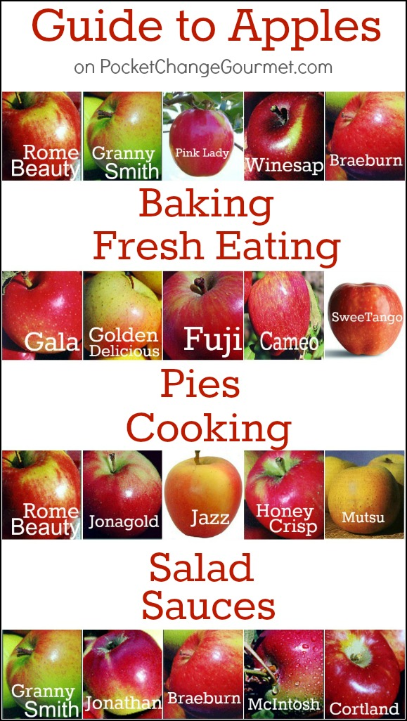 Twenty common apple varieties and the best ways to use them in baking, sauces, salads and pies. We have even done the research to find the best ones for eating. - types of apples