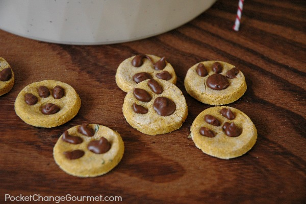 Recipe For Dog Treat Cookies