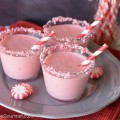 Peppermint Punch for Christmas