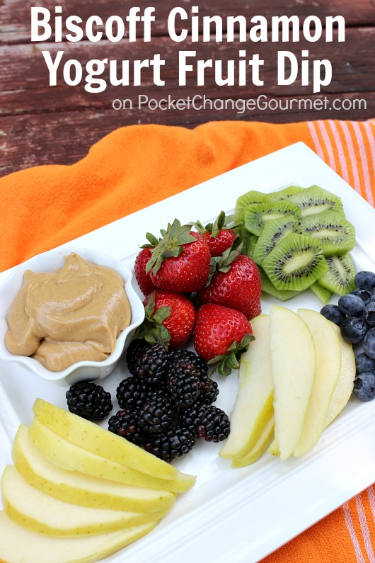 Biscoff Cinnamon Yogurt Fruit Dip :: Recipe on PocketChangeGourmet.com