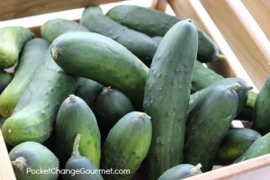 Farmer's Market Friday: Recipes with Cucumbers