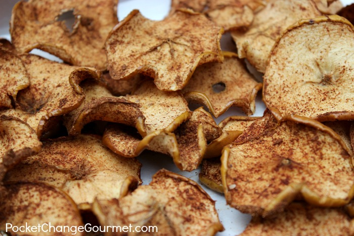 How to dry apples 6 uses for dried apples pocket change gourmet - Practical uses for the apple peels ...