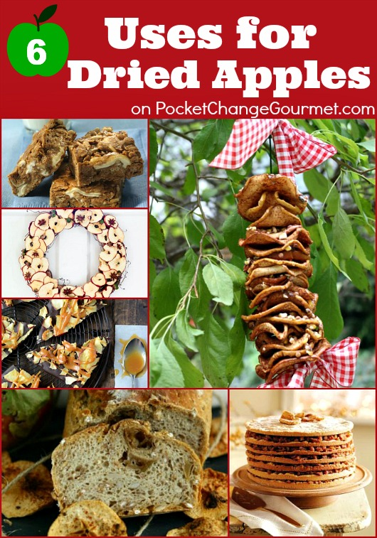 6 Uses for Dried Apples :: on PocketChangeGourmet.com
