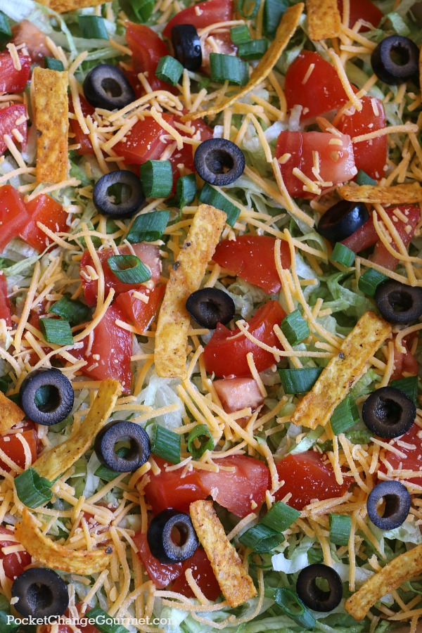 This easy to make 9 layer Vegetarian Taco Dip is perfect for Taco Night, Movie Night or to serve at Parties! Pin to your Recipe Board!