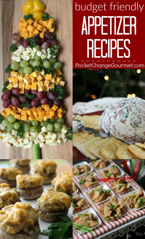 No reason to break the bank! Serve one of these Christmas Appetizer Recipes to family and guests and they will LOVE them! Easy to make and budget friendly too!