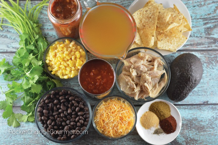 Ingredients for Spicy Chicken Tortilla Soup