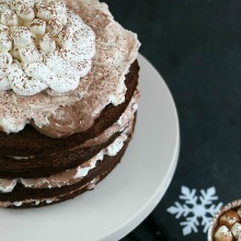 hot-cocoa-cake-v1-main_-1